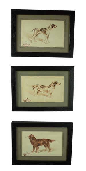 Set of Three Framed Watercolours of Dogs