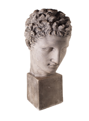 Grand Tour Museum Souvenir Plaster Bust of David
