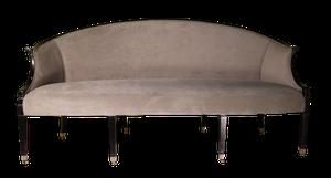Edwardian Ebonised Salon Canope