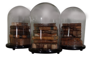Antique Books Under Reproduction Glass Domes