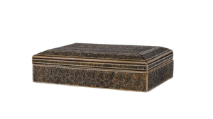 Mother of Pearl Inset Star Decorated Bone Kashmiri Box