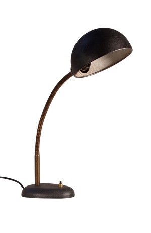 Steel Desk Lamp with Flexible Arm