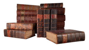 Sixteen Leatherbound Law Volumes