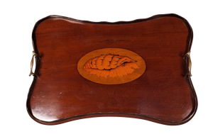 Rounded Rectangular Galleried Mahogany Tray Inlaid in Yew and decorated with a Conch Shell