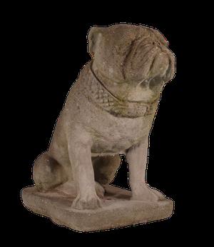 Composite Model of an English Bulldog