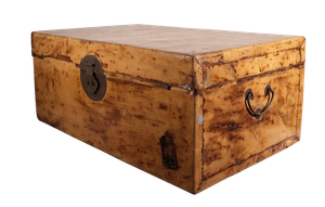 Chinese Export Lacquered Faux Leather Paper Covered Trunk